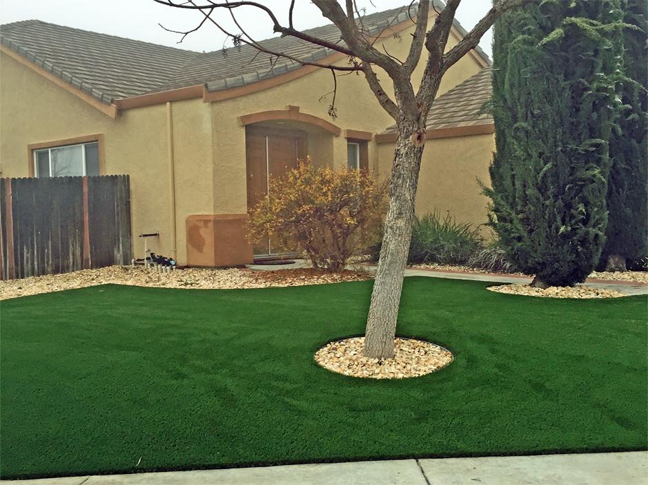 Best Artificial Grass View Park-Windsor Hills, California Garden