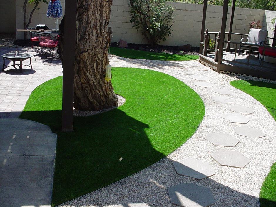 Grass Installation Saint David, Arizona Garden Ideas, Backyard