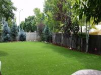 Pet Turf, Artificial Grass for Dogs Houston, Texas