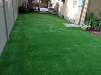 Synthetic Grass Goodrich, Texas Backyard Playground ...