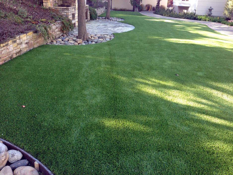 Plastic Grass Tucson, Arizona City Landscape, Backyard Garden Ideas