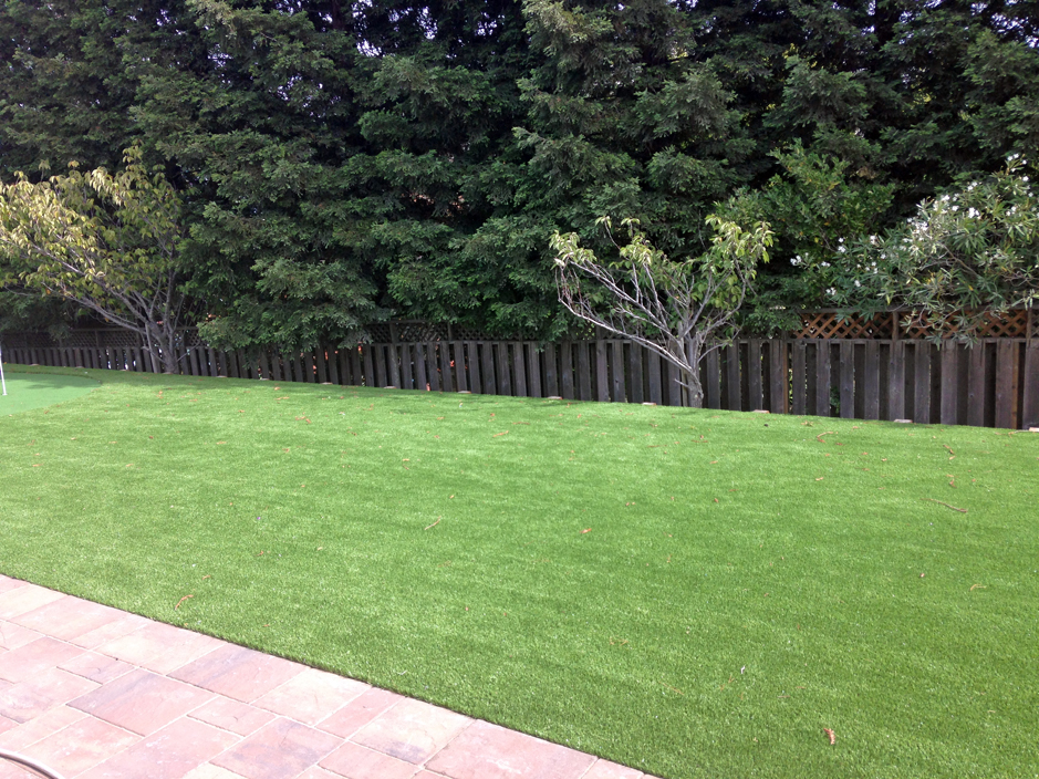 Fake Lawn Crawford, Texas Garden Ideas, Backyards