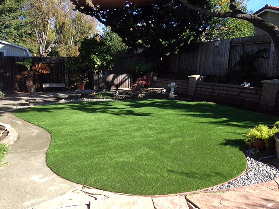 Fake Lawn Lexington, Texas Roof Top, Backyard Garden Ideas