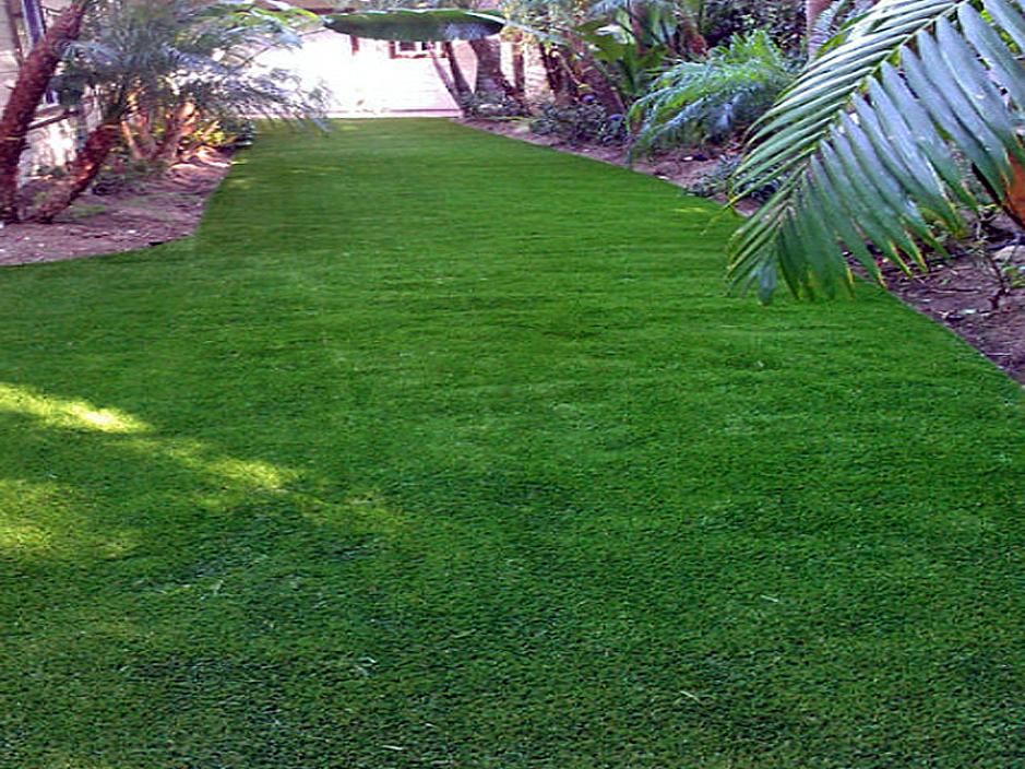 Plastic Grass Bayport, Florida City Landscape, Small Backyard Ideas