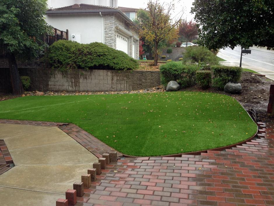 Best Artificial Grass Fountain Green, Utah Garden Ideas, Backyard