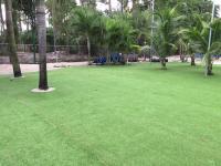 Grass Carpet Encinitas, California Rooftop, Commercial ...
