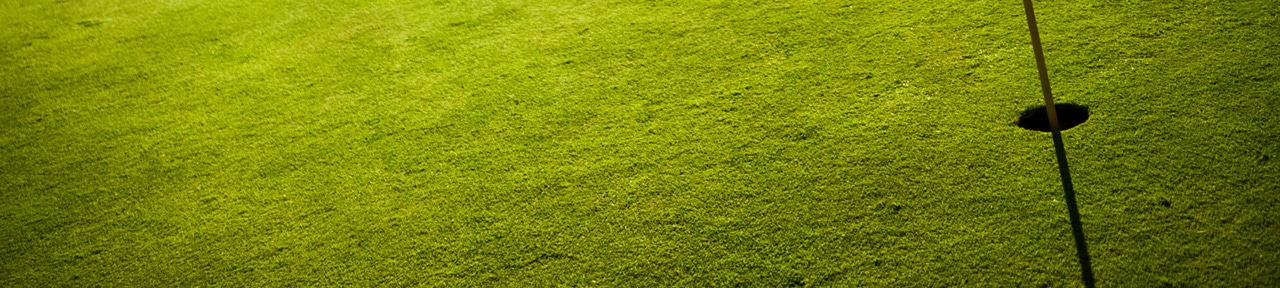 Artificial Grass Putting Green Synthetic Turf Synturf