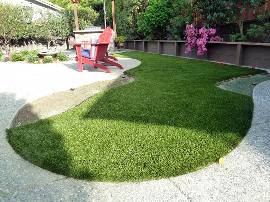Grass Turf Roberta, Georgia Garden Ideas, Backyard Garden Ideas