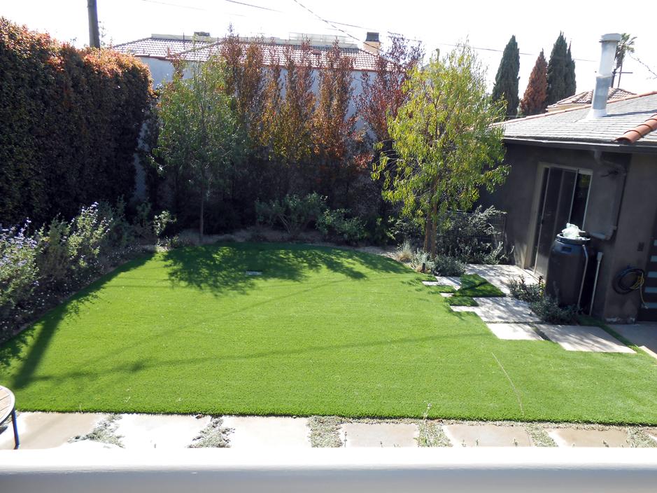 Synthetic Turf Craig, Colorado Garden Ideas, Small Backyard Ideas