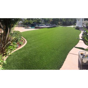 Front Lawns Without Gr on