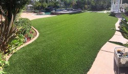 Small Of Backyards Without Grass