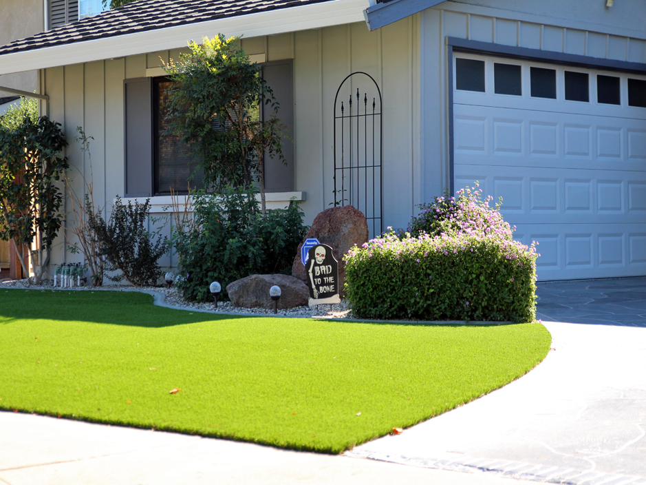 Synthetic Grass Hamilton City, California Garden Ideas, Front Yard