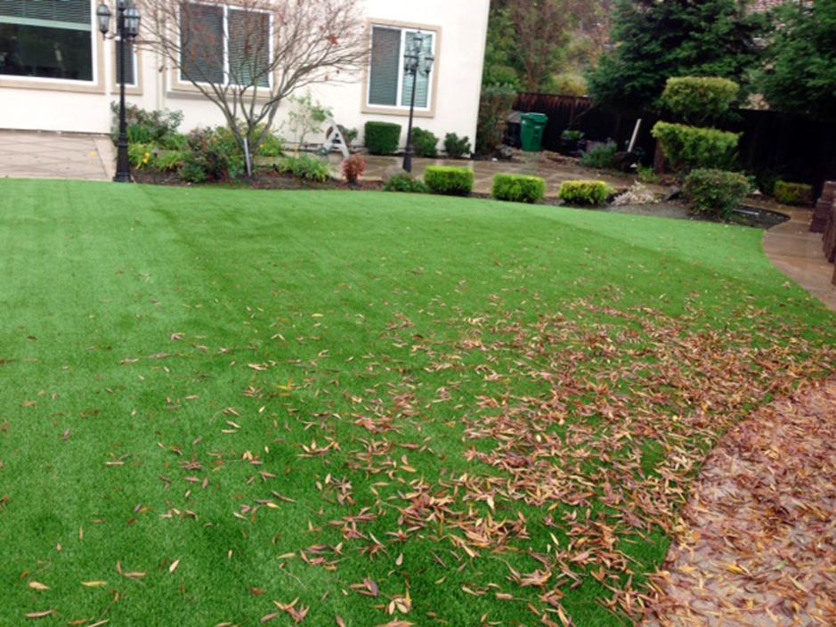 Best Artificial Grass Auburn, California Landscaping, Backyard