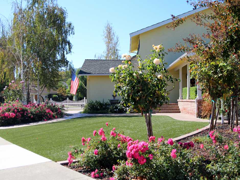 Plastic Grass American Canyon, California Landscaping Business