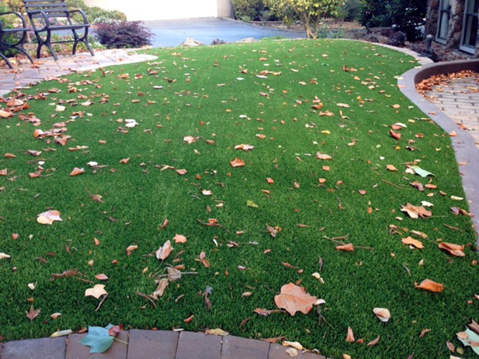 Lawn Services Pescadero, California Paver Patio, Front Yard Ideas