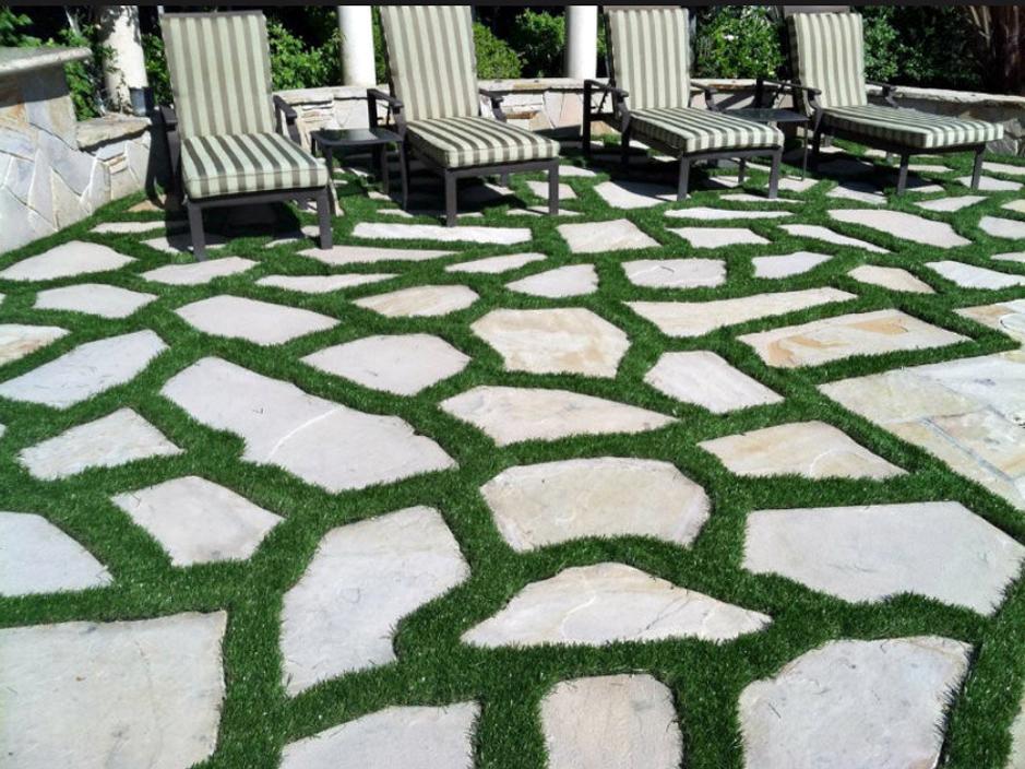 Grass Turf Isla Vista, California Garden Ideas, Beautiful Backyards