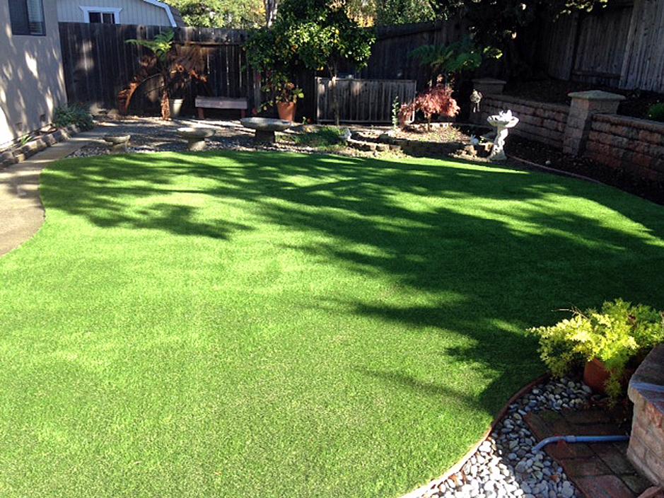 Grass Turf Blackstone, Virginia Dog Run, Backyard