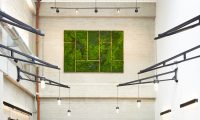 The perfect Green Wall Art for your home or business ...