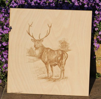 We Were Also Asked To Make A Large Engraving Of A Magnificent Stag
