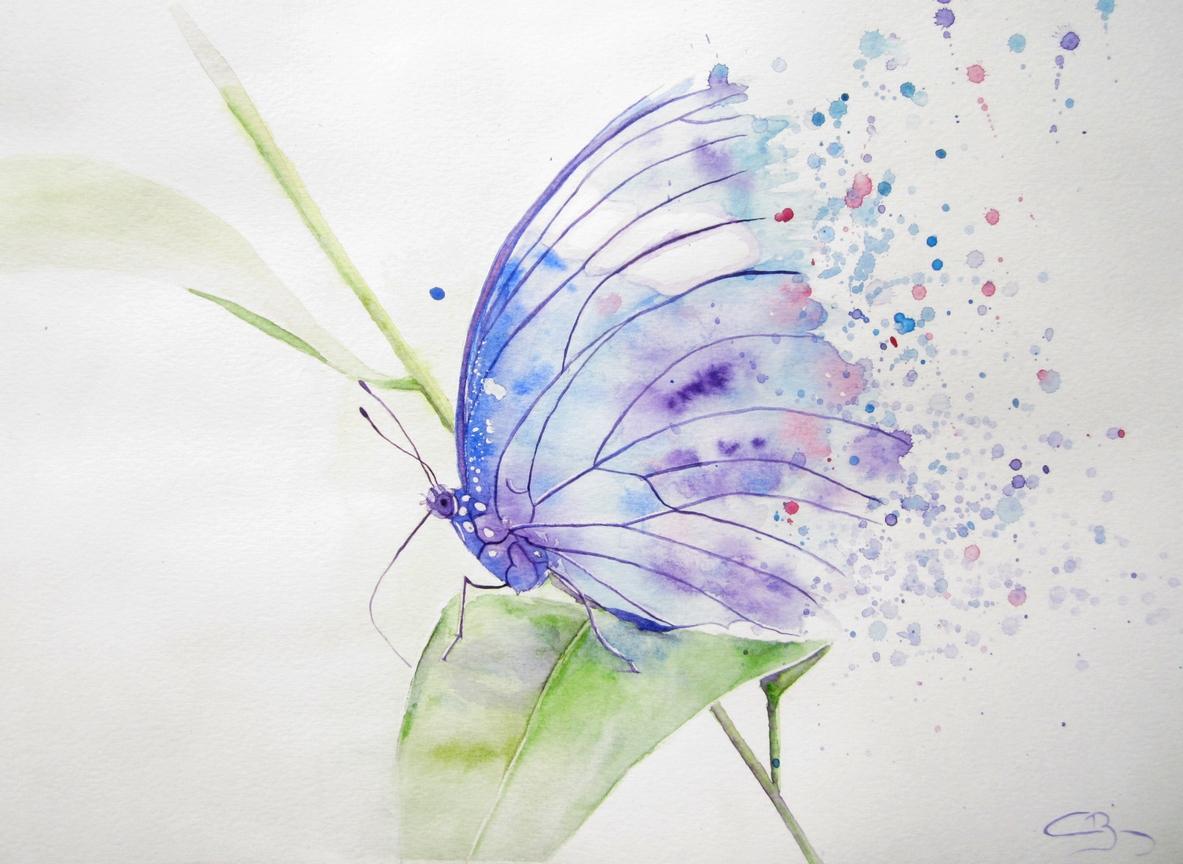 Papillon l aquarelle - Modele papillon ...