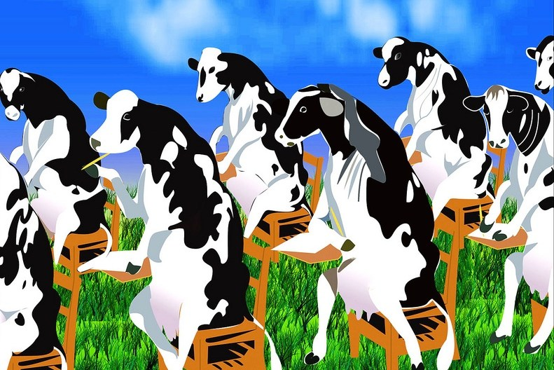 """""""Creative Commons Test for Dairy Farm"""" by Yasin Hassan is Licensed under CC By 2.0"""