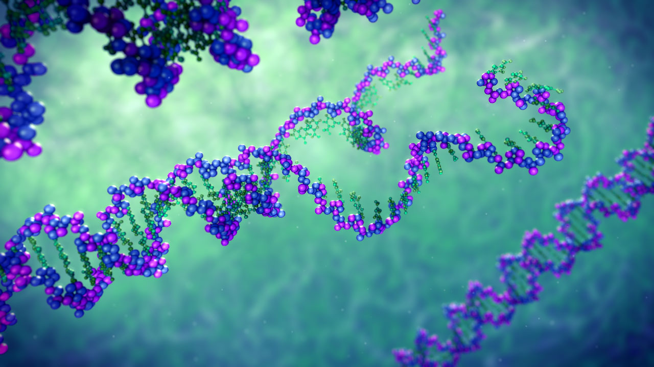 3d Animations Wallpapers Gif Unwinding Dna Scientific Illustration Medical