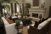 Beautiful Living Rooms with Earth Tones  Art of the Home