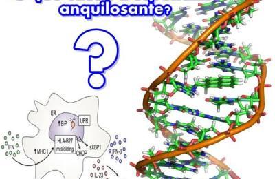 Genética Espondilite Anquilosante