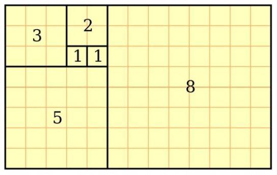 fibonaccigoldenrectangle