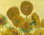 How Van Gogh's Sunflowers Got To Be Ubiquitous