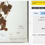 How The Smithsonian Is Using Crowdsourcing To Transcribe History