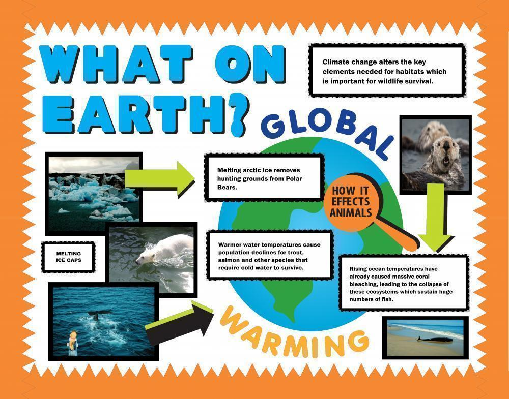 Make a Science Fair Project Poster Ideas - Global Warming Project