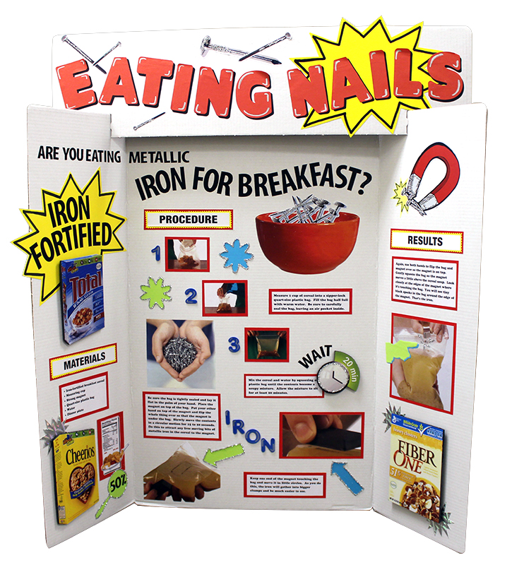 Make a Science Fair Project about Importance of Iron Nutrient