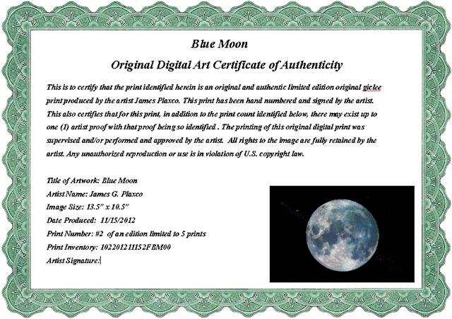 Samples certificate resume templateasprovider art certificate of authenticity samples certificate yelopaper Gallery
