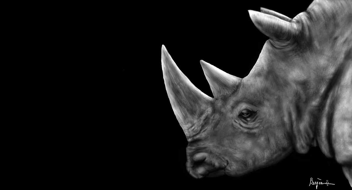 rhinoceros profile