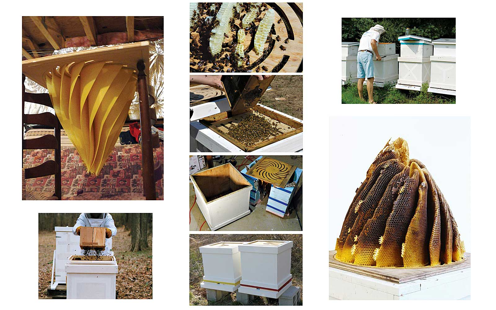 images of Hilary Berseth making sculptural beehives