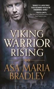 VikingWarriorRisingCover