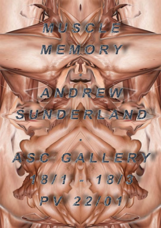Andrew Sunderland | ASC Gallery | 18 January - 18 March 2016