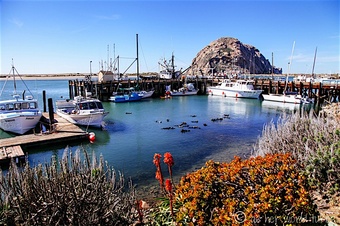 Beautiful Morro Bay, California As Her World Turns