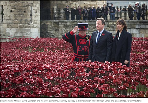 David Cameron and poppies on Art Is Everywhere