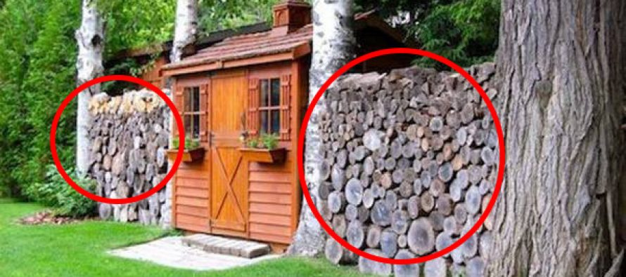 How To Store And Stack Firewood The Right Way Ask A Prepper