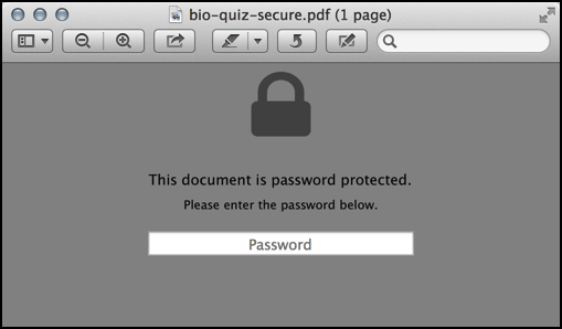enter password to access secure pdf on a mac system