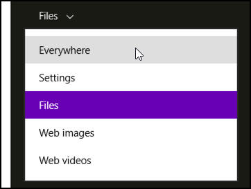 search category options in win8.1 windows 8.1 search charm