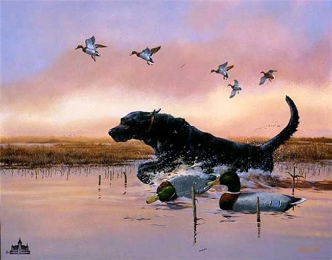 Cute Paw Print Wallpaper 30 Wonderful Black Labrador Retriever