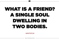 Sunshiny Sayings Quotes Friends Wedding Friends Forever Quotes A Single Soul Dwelling Two Friends Friends Quotes