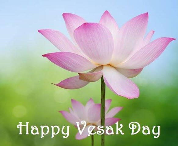 Monk Quotes Wallpaper 23 Happy Vesak 2017 Wish Pictures