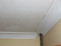 What are the alternative to plaster skim coat on Artex ...
