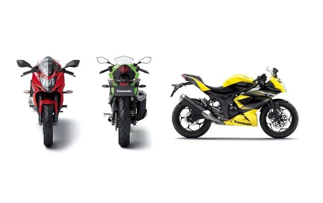 2014 Kawasaki Ninja RR   A 250cc Single Cylinder for Asia 2014 Kawasaki Ninja 250SL RR 03 635x400