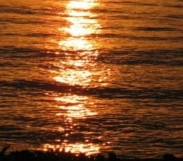 Mutiara Hikmah: Syukurilah Nikmat Allah