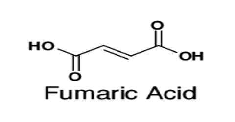 Definition of Fumaric Acid - Assignment Point